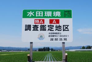 水田環境調査鑑定地区